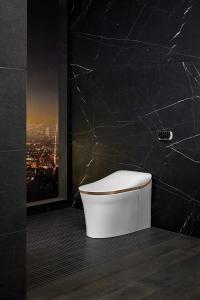 Kohler_smart_toilet